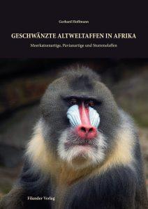 Geschwänzte Altweltaffen in Afrika