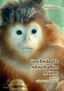 Geschwänzte Altweltaffen Asiens