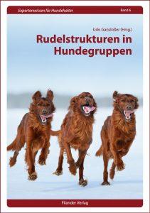 Rudelstrukturen in Hundegruppen